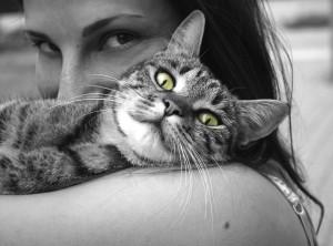 Tierkommunikatorin – Kontakt zu unseren Freunden