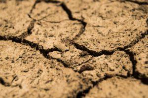 Element Erde und deren Auswirkungen auf den Kinderwunsch